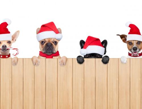 TOP 10 vianočné reklamy v roku 2016
